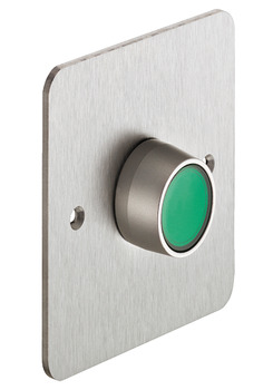 Exit Switch, Illuminated, Stainless Steel