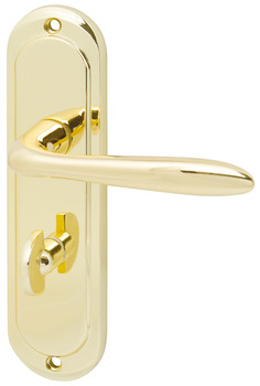 Lever Handles, on Backplates for Bathroom Lock, Mocho
