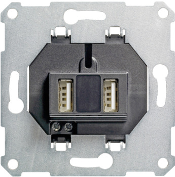USB Power Supply, with 2 x USB Connectors, Gira